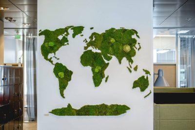 InnoGreen maailmankartta sammaleesta